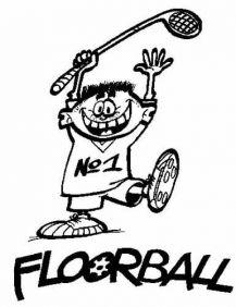 Výsledek obrázku pro florbal